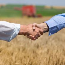 reyle agrar getreidevermarktung