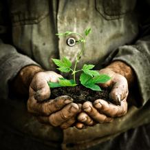 reyle agrar pflanzenschutzmittel